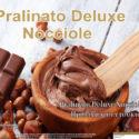 """Πραλίνα Φουντουκιού """"Pralinato Deluxe"""" 13kg – 6kg"""